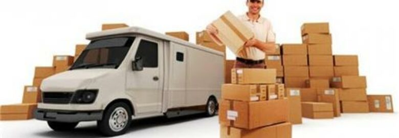 DTDC Couriers